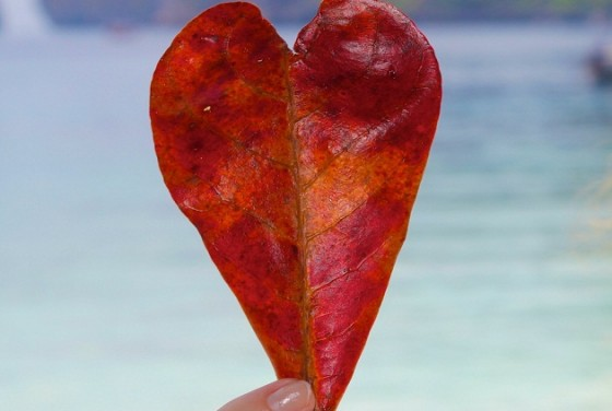Najljepše ljubavne poruke – recite voljenoj osobi koliko vam znači