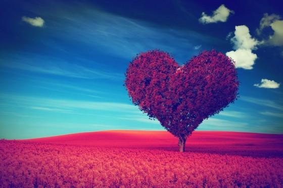 Kada ljubav postane navika